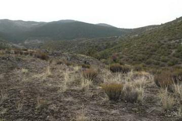 Jagdgebiet Türkei