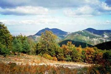 Landschaftsimpression des Jagdgebiet Vitoshko bei Sofia