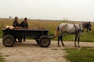 Jäger mit Jagdgehilfen und Pferdewagen bereit für die Pirsch auf den Rehbock<small>&copy H. R.</small>