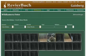RevierBuch Wildkamera Bilder