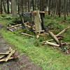 Schleswig-Holstein: Über 50 Hochsitze zerstört