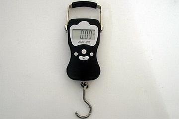 Elektronische LCD - Wild - Hängewaage bis 50 kg