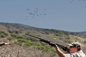 Argentinien - Dove Shooting