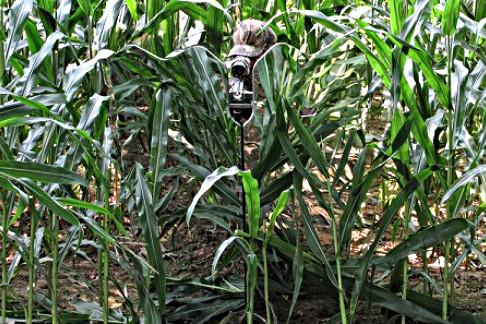 GhostBlind 4 Panel Predator - Spiegeltarnschirm