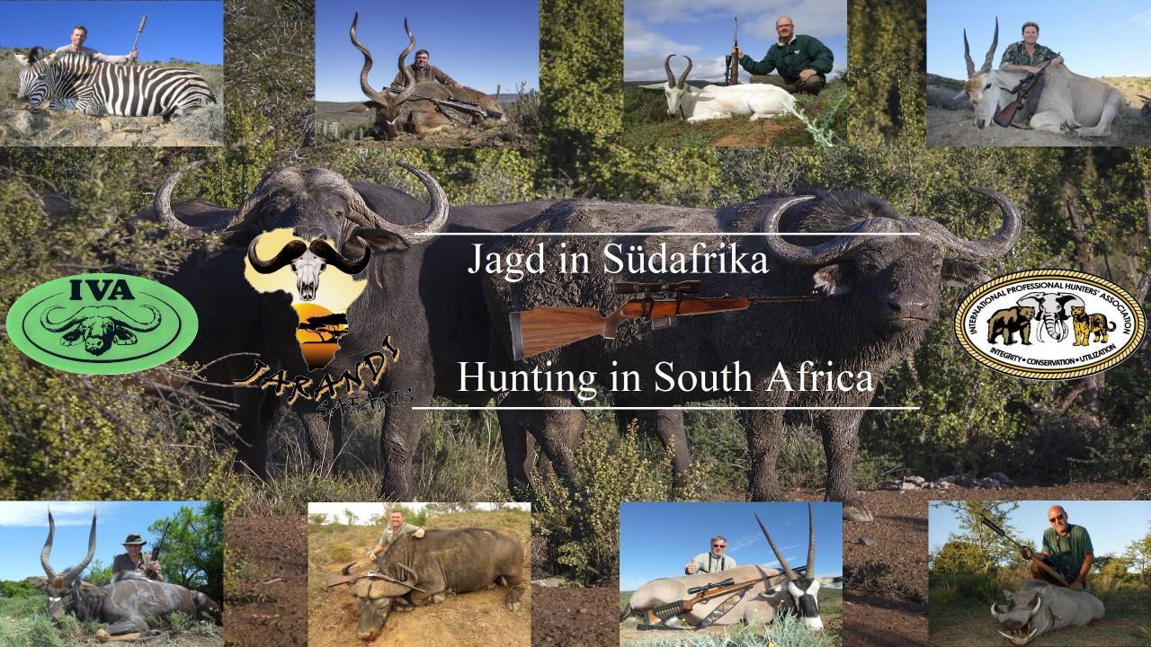 Jagd Forum