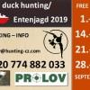 Wild Enten Jagd Jagdgelegenheit Jagdmöglichkeit in Tschechien