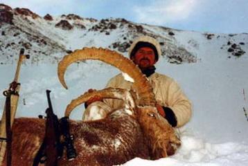 Sibirischer Steinbock mit 128 cm