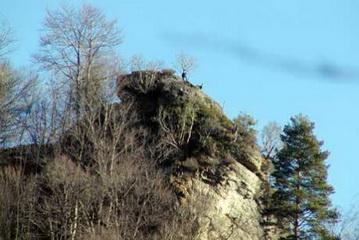 Gemse auf 350 Entfernung, Capatanii Gebirge bei Olanesti<small>&copy H. R.</small>