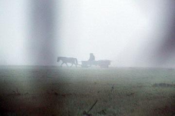 Pferdewagen im Morgennebel<small>© H.R.</small>