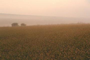 Hügellandschaft am Rande des Donaudelta<small>© H.R.</small>
