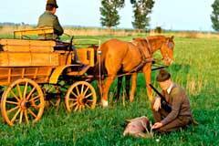 Jagen im traditionellen Jagdland Ungarn