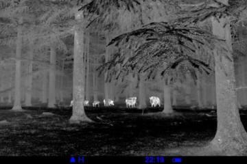 Nachtaufnahme<small>&copy Pulsar</small>