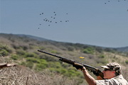 Argentinien - Dove Shooting